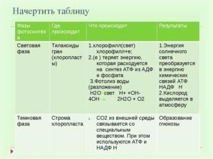 Начертить таблицу Фазы фотосинтеза Где происходит Что происходит Результаты С