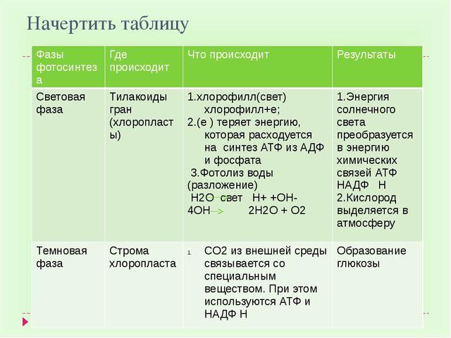 Начертить таблицу Фазы фотосинтеза Где происходит Что происходит Результаты С...