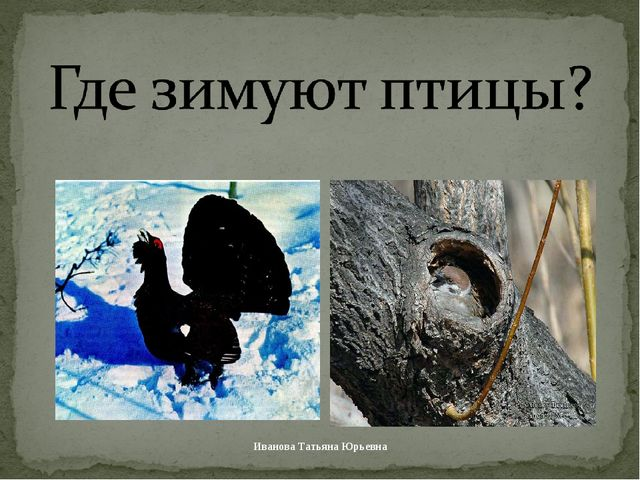 Иванова Татьяна Юрьевна