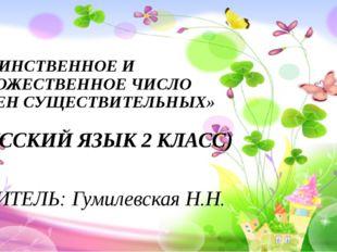 «ЕДИНСТВЕННОЕ И МНОЖЕСТВЕННОЕ ЧИСЛО ИМЕН СУЩЕСТВИТЕЛЬНЫХ» (РУССКИЙ ЯЗЫК 2 КЛА