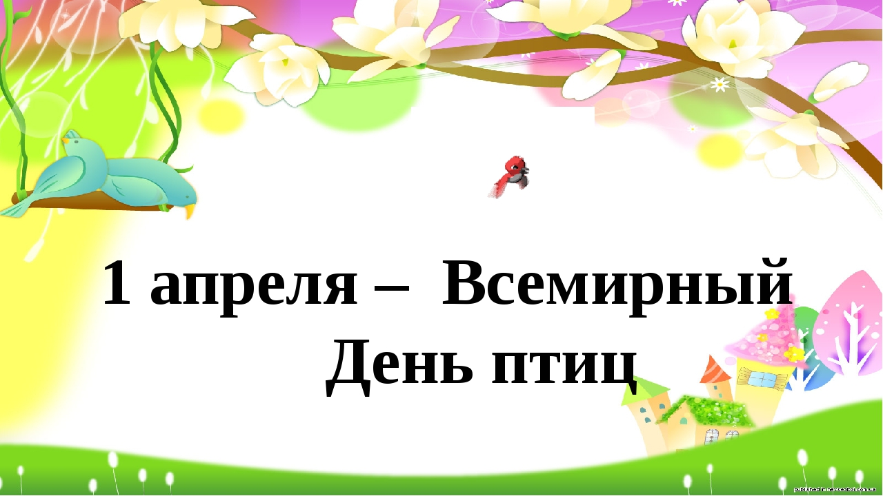 1 апреля – Всемирный День птиц