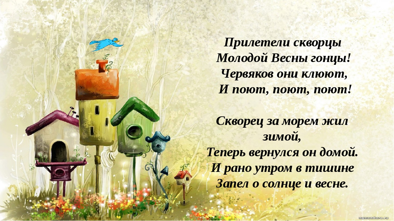 Прилетели скворцы Молодой Весны гонцы! Червяков они клюют, И поют, поют, поют...