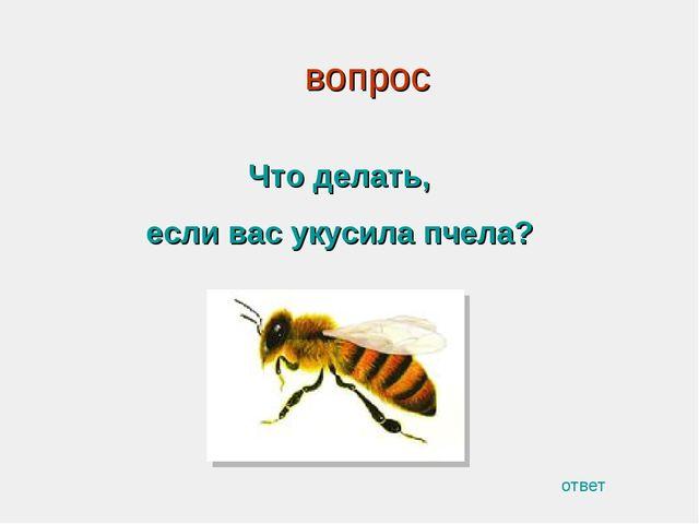вопрос Что делать, если вас укусила пчела? ответ
