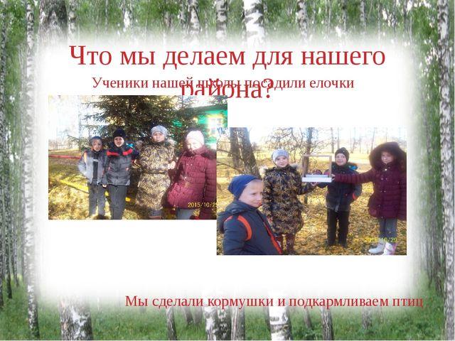 Что мы делаем для нашего района? Ученики нашей школы посадили елочки Мы сдела...