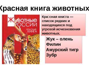 Красная книга животных Кра́сная кни́га —список редких и находящихся под угроз