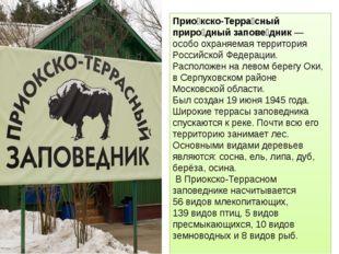 Прио́кско-Терра́сный приро́дный запове́дник — особо охраняемая территория Рос