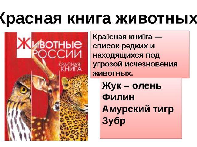 Красная книга животных Кра́сная кни́га —список редких и находящихся под угроз...