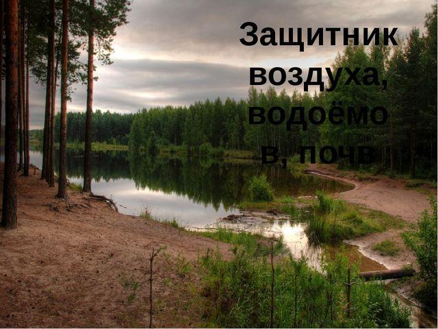 Защитник воздуха, водоёмов, почв