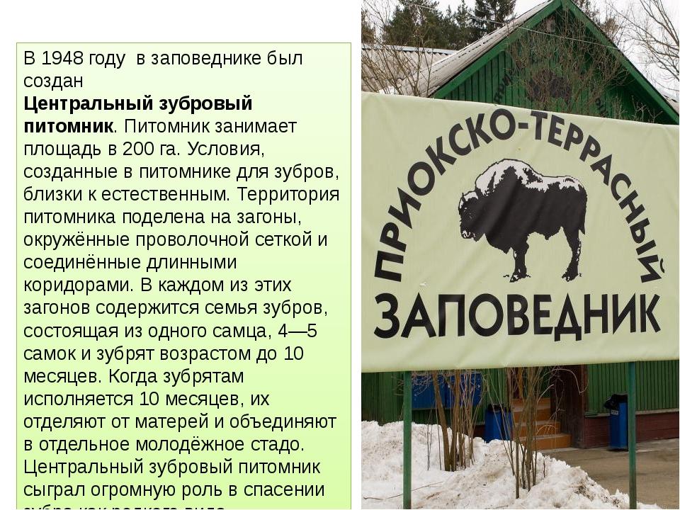 В 1948 году в заповеднике был создан Центральный зубровый питомник. Питомник...