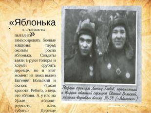 «Яблонька» «…танкисты пытались замаскировать боевые машины: перед окопом ро