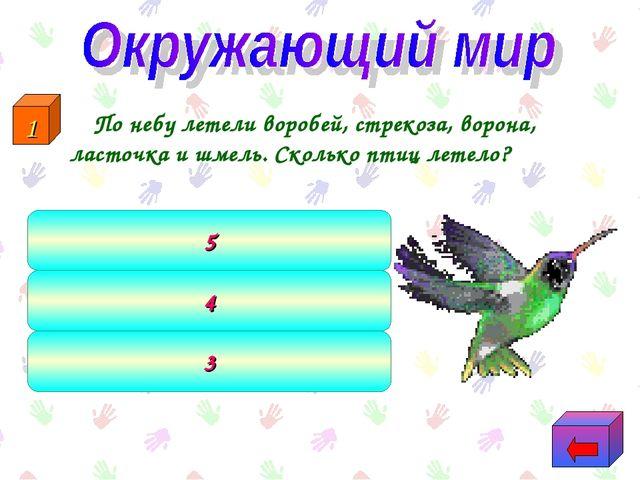 По небу летели воробей, стрекоза, ворона, ласточка и шмель. Сколько птиц лет...