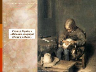 Герард Терборх «Мальчик, ищущий блоху у собаки»