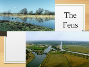The Fens