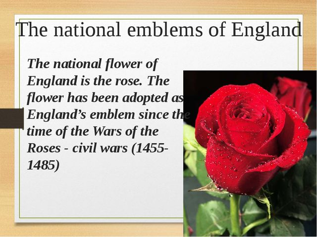 The national emblems of England The national flower of England is the rose. T...