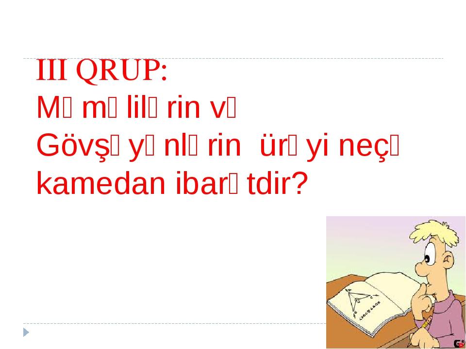 III QRUP: Məməlilərin və Gövşəyənlərin ürəyi neçə kamedan ibarətdir?