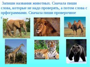 Запиши названия животных. Сначала пиши слова, которые не надо проверять, а п