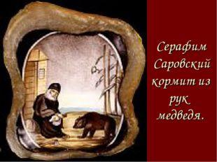 Серафим Саровский кормит из рук медведя.