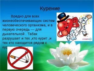 Курение Вредно для всех жизнеобеспечивающих систем человеческого организма,