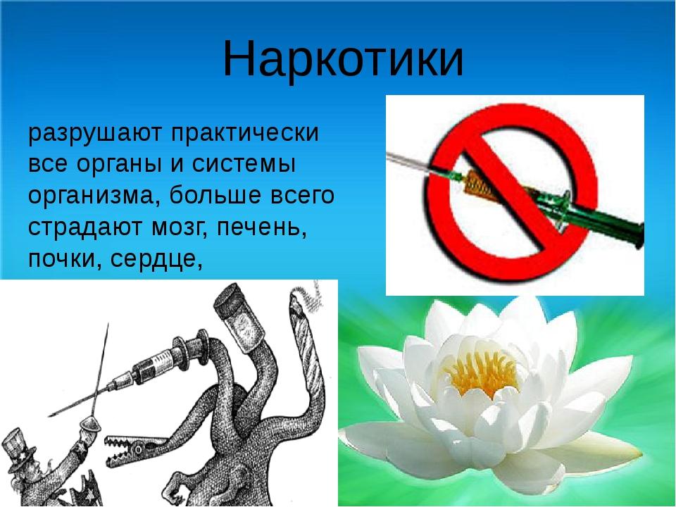 Наркотики разрушают практически все органы и системы организма, больше всего...