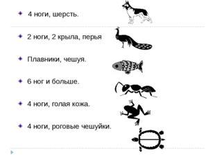 4 ноги, шерсть. 2 ноги, 2 крыла, перья Плавники, чешуя. 6 ног и больше. 4 но