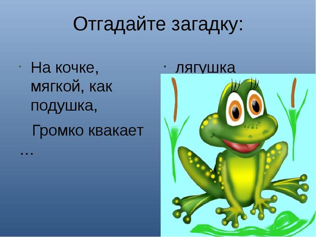 Отгадайте загадку: На кочке, мягкой, как подушка, Громко квакает … лягушка