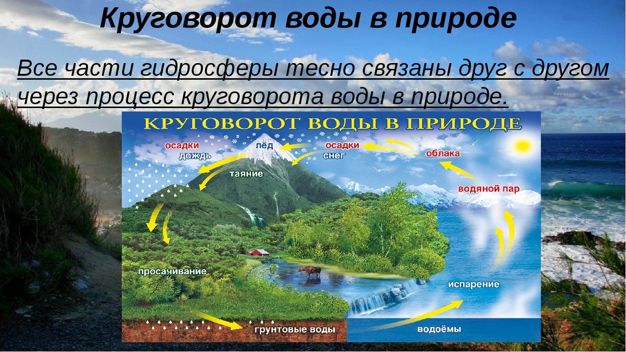 Круговорот воды в природе Все части гидросферы тесно связаны друг с другом...