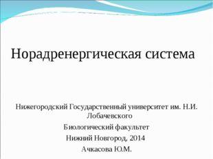 Норадренергическая система Нижегородский Государственный университет им. Н.И.