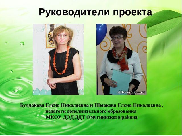 Руководители проекта Булдакова Елена Николаевна и Шмакова Елена Николаевна ,...