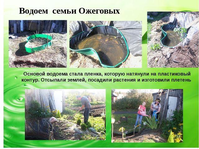 Водоем семьи Ожеговых Основой водоема стала пленка, которую натянули на плас...