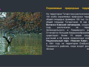 Охраняемые природные территории На территории Татарстана расположено более 15