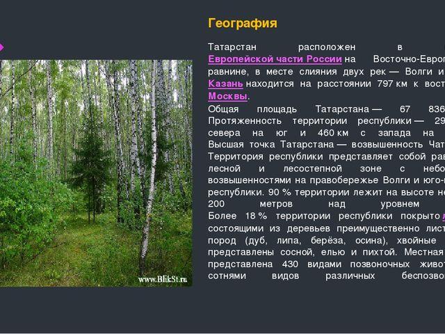 География Татарстан расположен в центреЕвропейской части Россиина Восточно-...