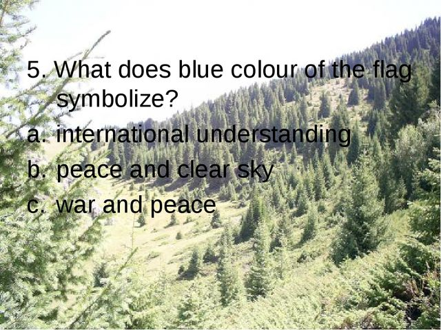 5. What does blue colour of the flag symbolize? international understanding p...