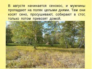 В августе начинается сенокос, и мужчины пропадают на полях целыми днями. Там