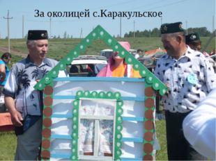За околицей с.Каракульское
