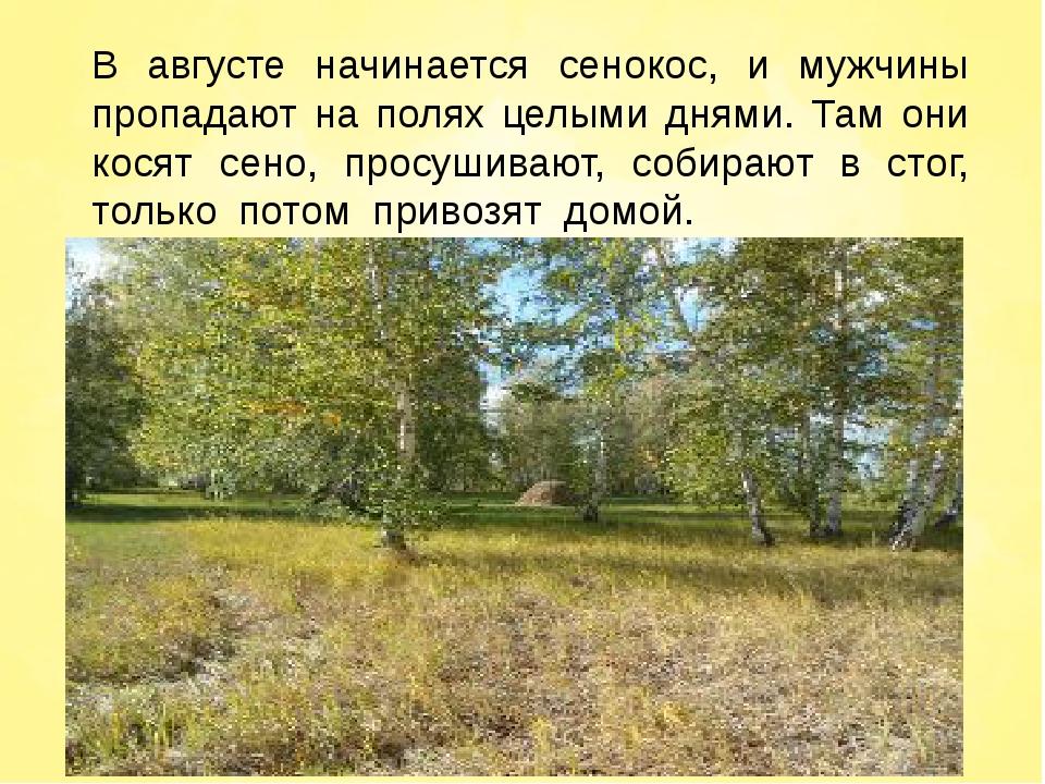 В августе начинается сенокос, и мужчины пропадают на полях целыми днями. Там...