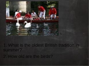 1. What is the oldest British tradition in summer? 2. How old are the birds?