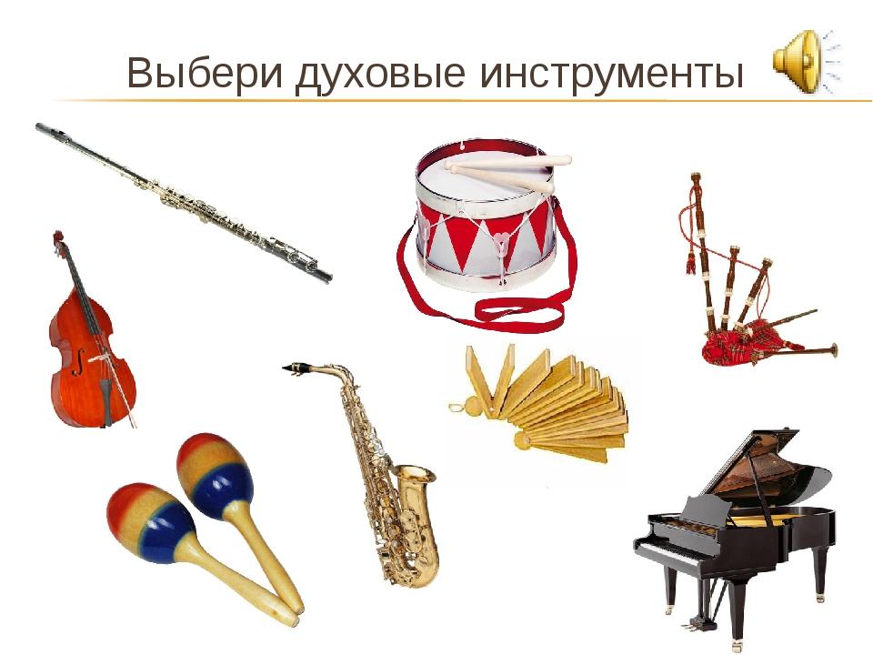 Выбери духовые инструменты