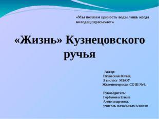 «Жизнь» Кузнецовского ручья «Мы познаем ценность воды лишь когда колодец пере