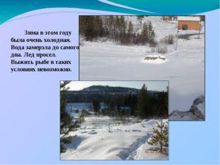 Зима в этом году была очень холодная. Вода замерзла до самого дна. Лед просе