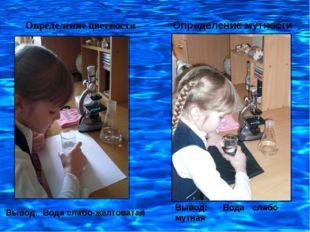 Определение цветности Определение мутности Вывод: Вода слабо мутная Вывод: Во