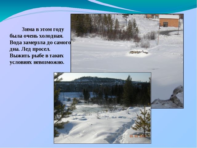 Зима в этом году была очень холодная. Вода замерзла до самого дна. Лед просе...