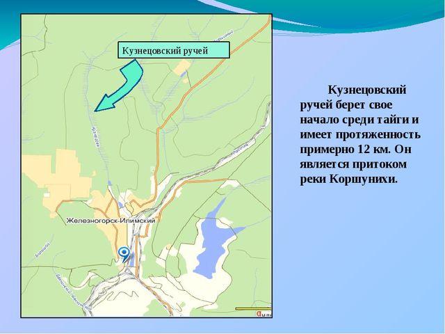 Кузнецовский ручей берет свое начало среди тайги и имеет протяженность приме...