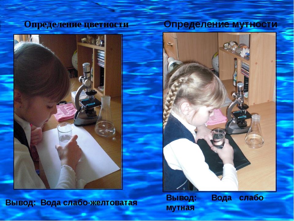 Определение цветности Определение мутности Вывод: Вода слабо мутная Вывод: Во...