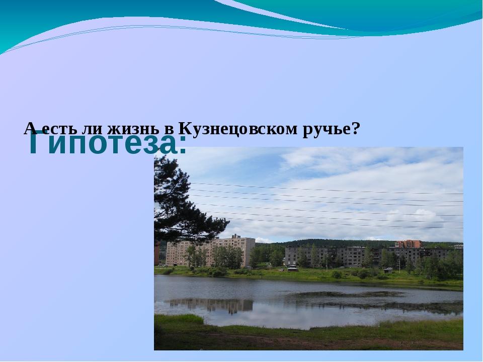 Гипотеза: А есть ли жизнь в Кузнецовском ручье?