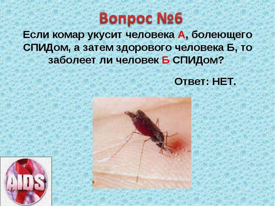 Если комар укусит человека А, болеющего СПИДом, а затем здорового человека Б,...