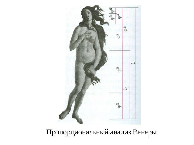 Пропорциональный анализ Венеры