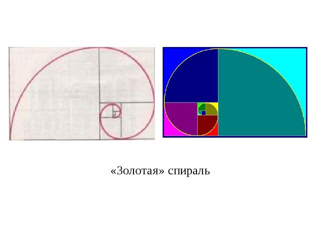 «Золотая» спираль
