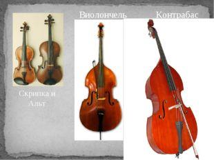 Скрипка и Альт Виолончель Контрабас