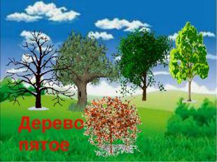 Дерево пятое