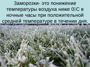 Заморозки- это понижение температуры воздуха ниже 0⁰С в ночные часы при полож